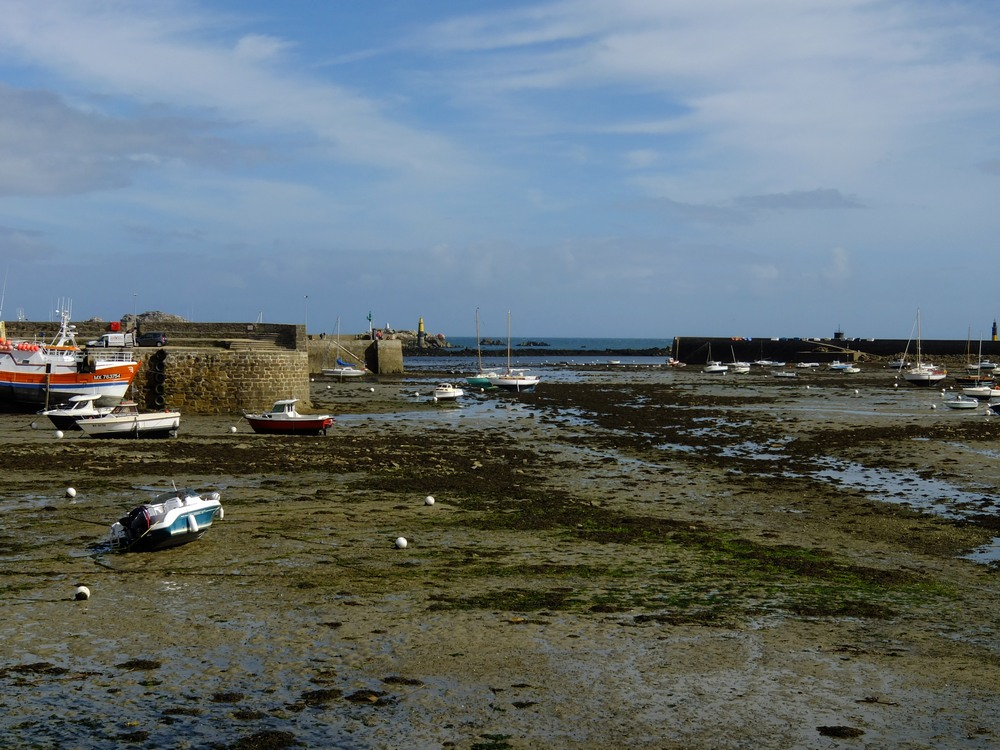 Roscoff harbour at low tide