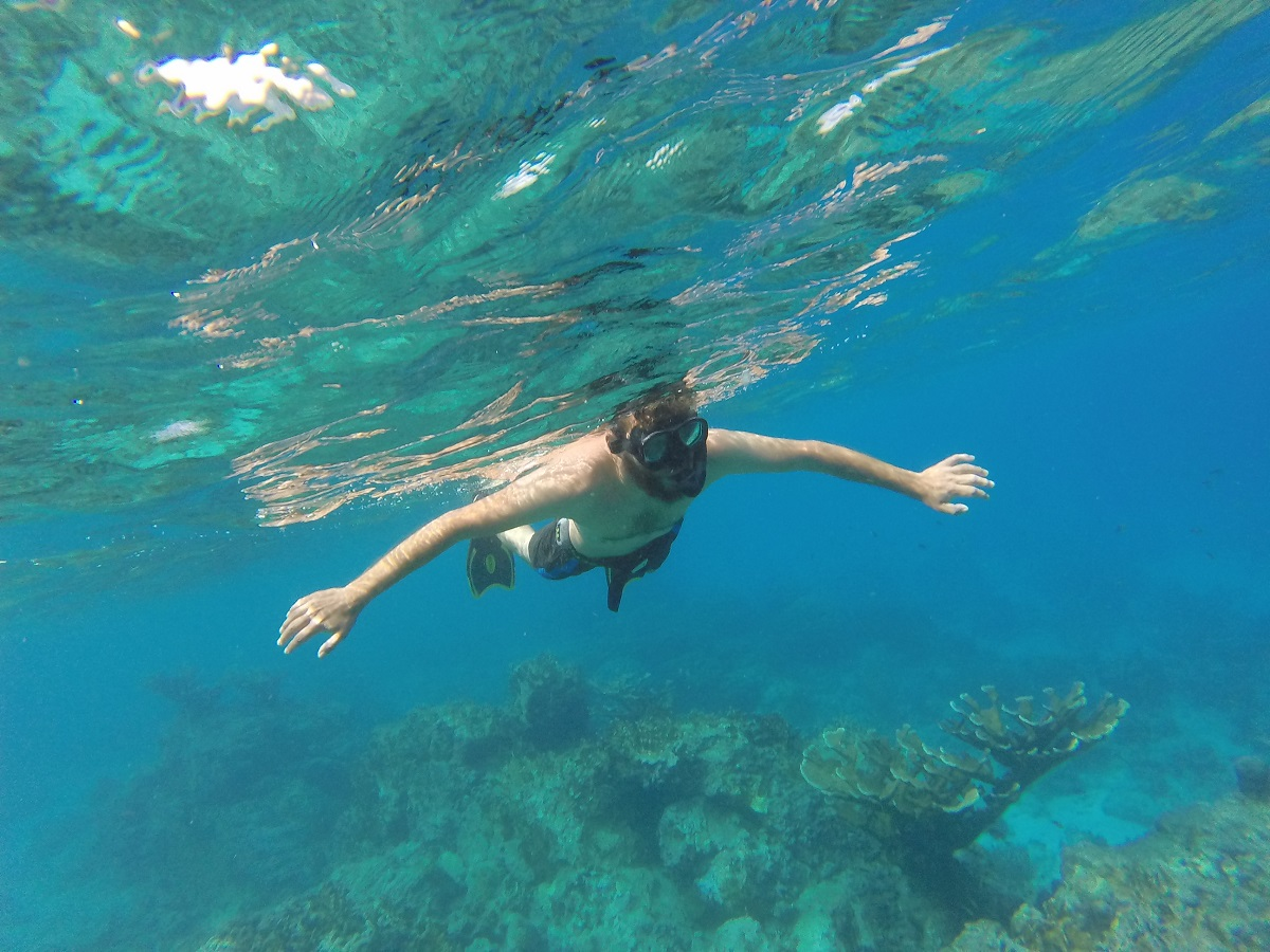 Snorkeling at the Pigeon Island reef